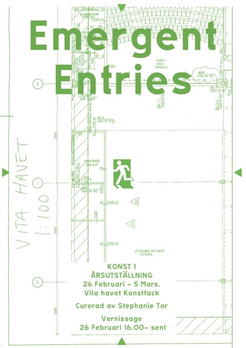 EMERGENT ENTRIES