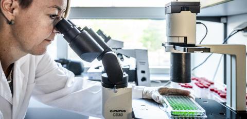 Idogens forskningschef är en av talarna på internationellt immunterapisymposium