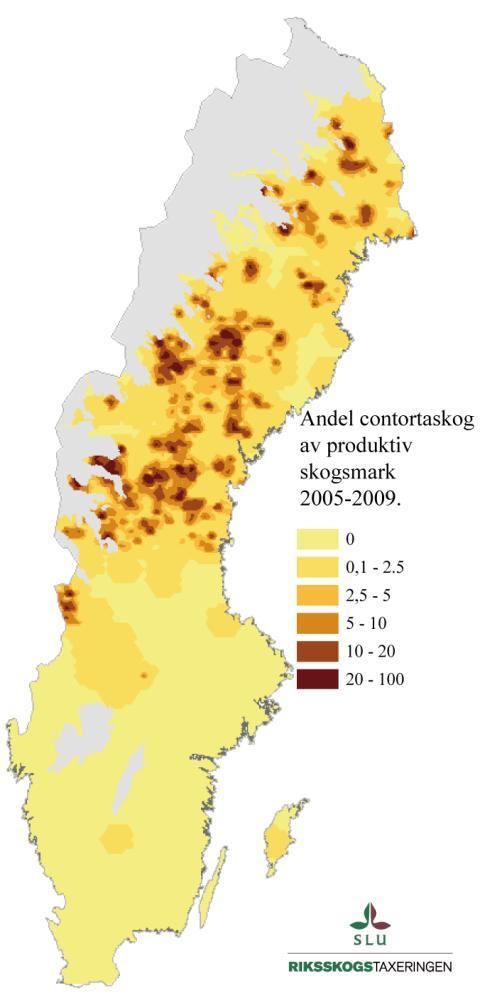 Andel contortatall, karta, Sverige