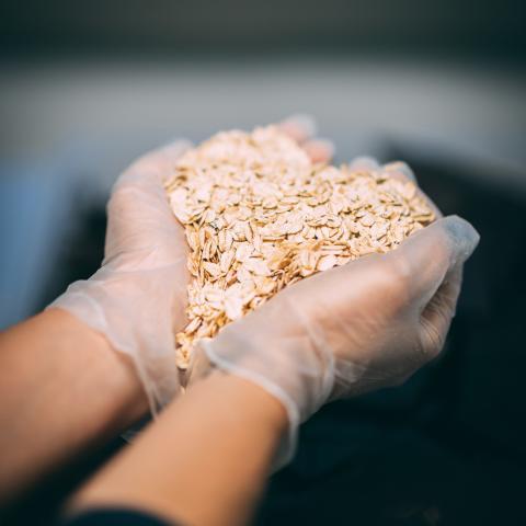 Suklaabrändi Goodio patentoi innovatiivisen ChocOat-uutuuden – lähes 60% vähemmän sokeria kuin maitosuklaassa