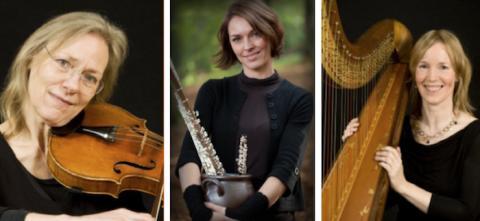 Kammarmusikföreningen bjuder på vacker musik före årsmötet