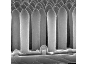 Global and United States Nanowire In-Depth Research Report 2017-2022