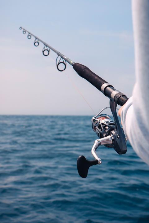 Fish 'N' Tips vil tilbyde det bredeste udvalg og de bedste priser