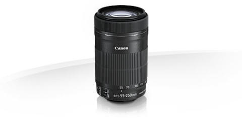 Canon EF S 55 250mm f/4-5.6 IS STM