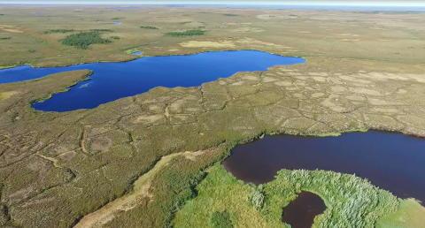 Utsläppen av växthusgaser från Sibiriska sjöar är höga