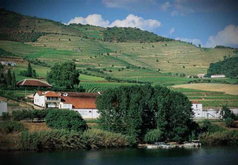 Douro-dalen.