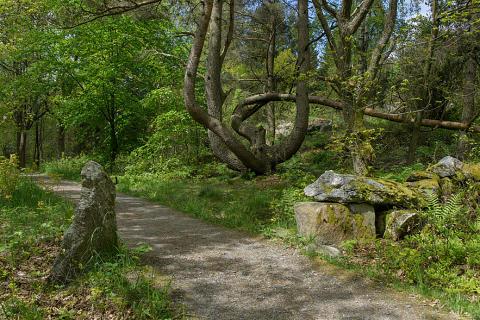 Beslutat av park- och naturnämnden i Göteborg 15 april 2019