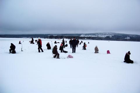 6000 skolbarn får pimpelfiska i vinter!