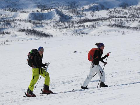 Ny rapport: Besökare och besök i svenska fjällen
