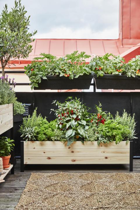 Cultura planteringslåda Plantagen