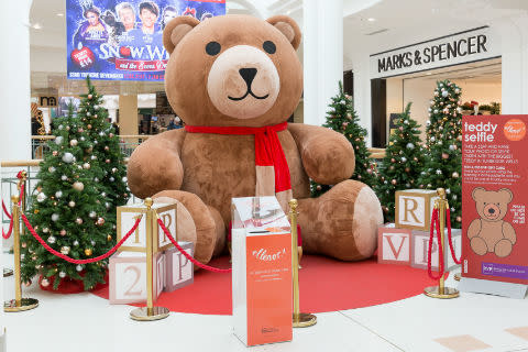 Tunbridge Wells giant teddy bear gets a name for Christmas