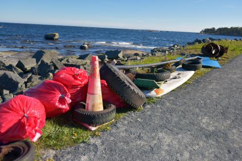Pressinbjudan: Karlshamns öar och stränder rensas från skräp