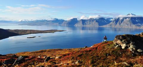 Vi vil ha din mening om reiselivet rundt Lyngenfjorden