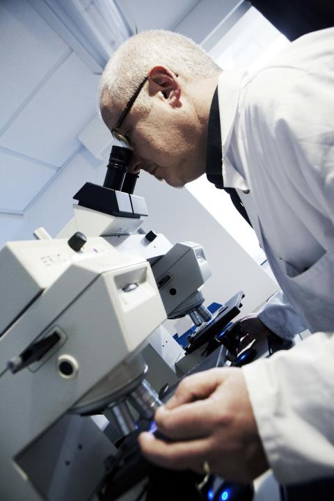 Hair and textiles go under the microscope at gathering of forensic science specialists