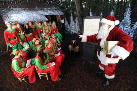 Secret elf finishing school revealed as Santa's little helpers flock to 'Elf'eden Forest
