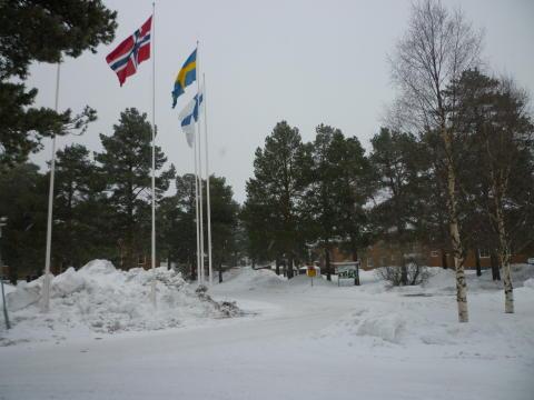 Utbildning Nord uppmärksammar Nordens dag