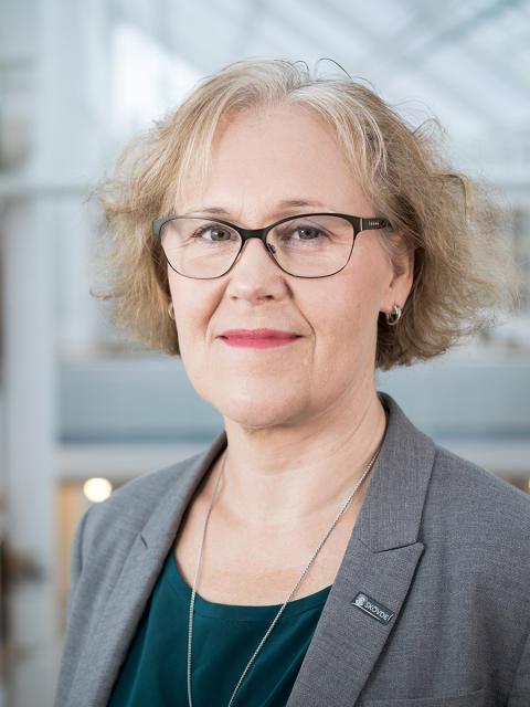 Maria Vaziri, ekonomichef