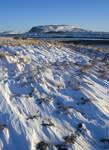 Islanti ja Reykjavik valittiin Lonely Planetin Matkaoppaan äänestyksessä 'Parhaiksi matkakohteiksi' 2012