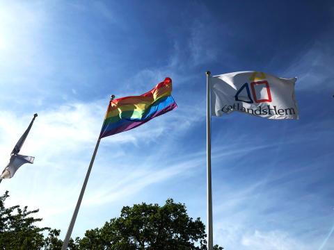 Vi flaggar för mångfald