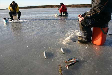 Succé för digitala fiskekort