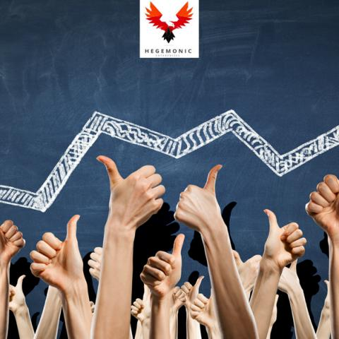 Hegemonic Enterprise Exclusively Reveals the Secrets of Its Success