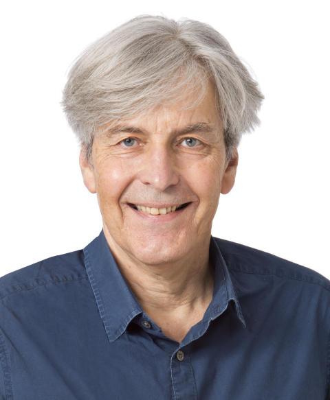 Hans Persson, Författare
