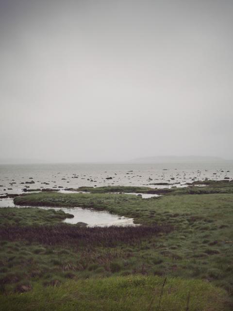 Nya Havs- och vattenmyndigheten startar