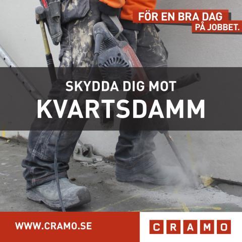SKYDDA DIG MOT KVARTSDAMM!