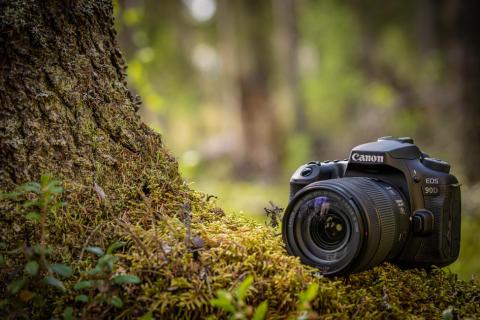Canon styrker sin EOS-portefølje med et nyt spejlløstkamera EOS M6 Mark II og DSLR-kamera EOS 90D