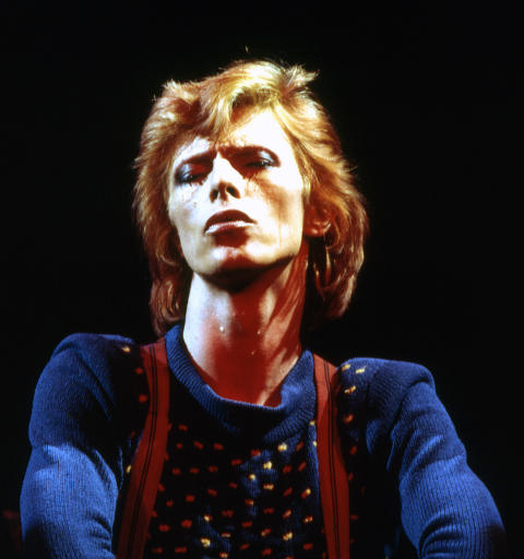 Bowie (Dagmar Photo)