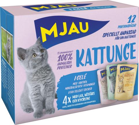 Mjau Kattunge multibox