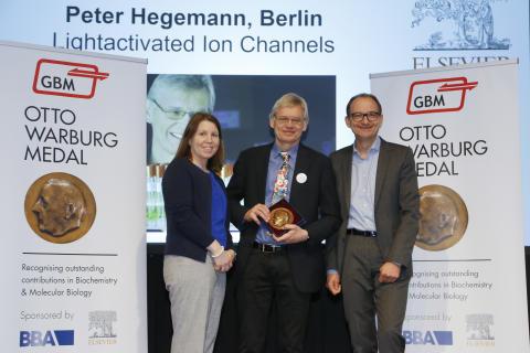 Prof. Dr. Peter Hegemann erhält die Otto-Warburg-Medaille 2018