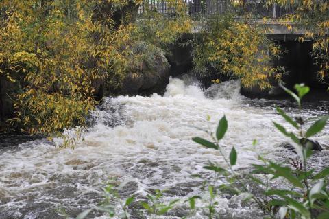Samråd om förslag till nationell plan för omprövning av vattenkraft
