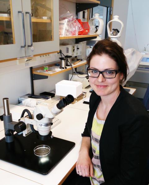 Hilda Ahnstedt, forskare inom experimentell kärlforskning vid Lunds universitet