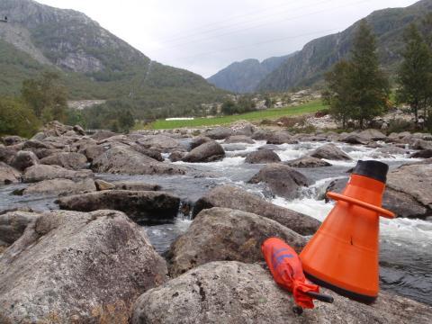 Hvordan påvirkes elvas økosystem av regulering?