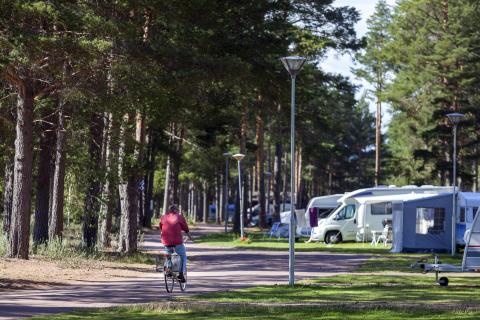 Besöksrekord på Svenska Campingpärlors anläggningar