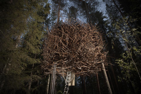 Bird's nest, Treehotel