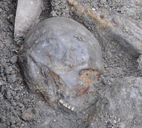 Skalle funnen vid utgrävningar i Motala