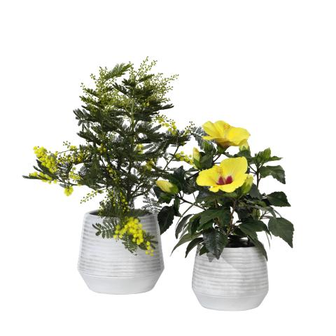 Interflora Sommarens Kollektion 2019 - Vita krukor