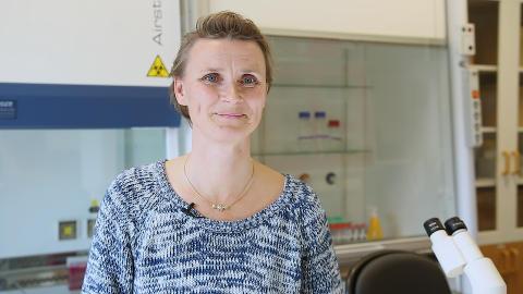 Professor Katarina Ejeskär