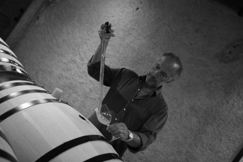 Ny topproducent från Bourgogne i samarbete med Carovin!