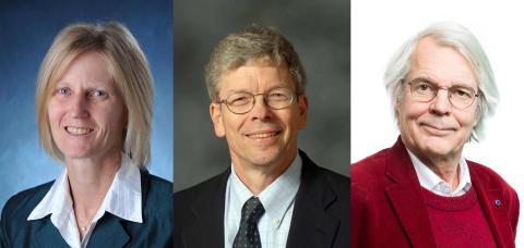 Vetenskapsjournalist, geodet och fysiker blir Chalmers hedersdoktorer 2017