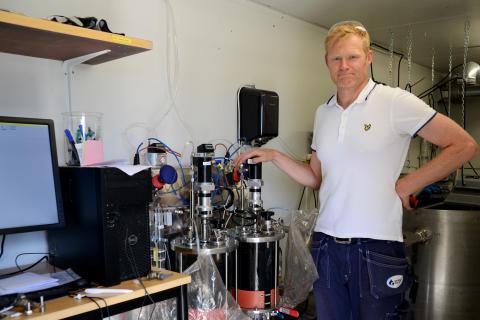Kan alger öka biogasproduktionen i svenska reningsverk?