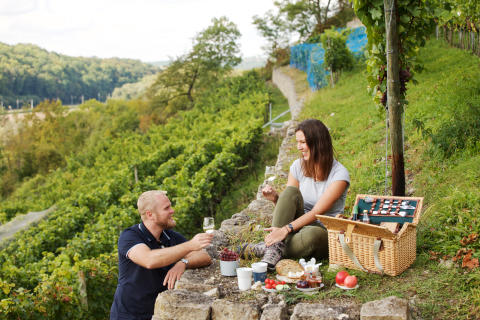 Picknick mit Weinverkostung an der Saale