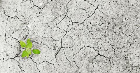 Hållbarhet är inget man löser i Gävle