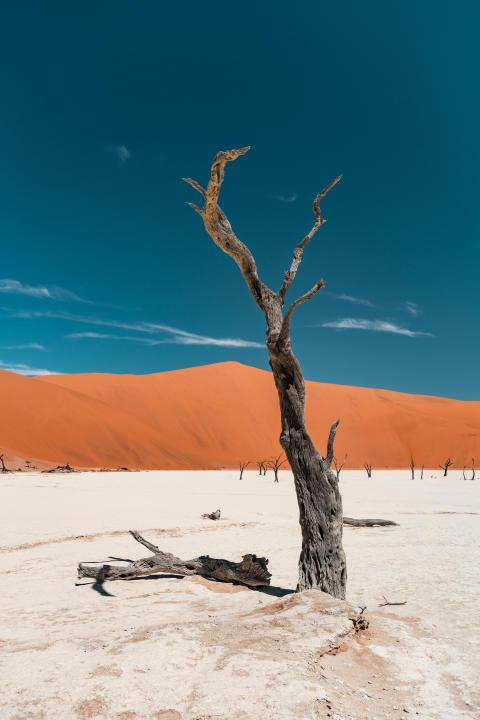 Alphaddicted_Roadtrip Namibia_11