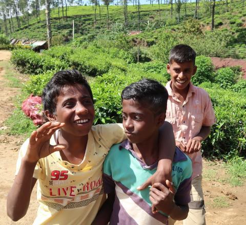 Sri Lanka sörjer - Reflektion från en Sri Lanka-resespecialist