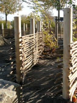 Klagshamnskolan flätar pilstaket och planterar sin nya skolgård