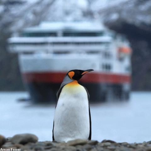 Peer Gynt Tours med ny brosjyre for turer med Hurtigruten