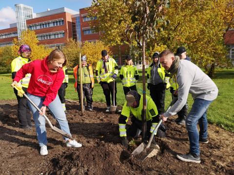 Coca-Colan ja Sinebrychoffin 20 yhteistyövuoden kunniaksi Keravalle nousee Coca-Cola-puistikko